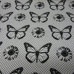 Butterflies White